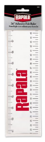Rapala Adhesive Fish Ruler 36 - Sporting Goods Bass