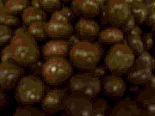 Sugar Free Chocolate Covered Malt Balls (No Sugar Added), (Chocolate Is Sugar-free, Malt Ball Center Contains Sugar) 8 Oz. Bag