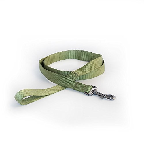 Pet Champion Fin and Foul Series 5ft No Pull Easy Lead Hunting Dog Leash, Strategy Warm Green, Large 1in x 5ft