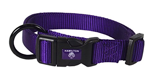 Image of Hamilton Adjustable Nylon Dog Collar