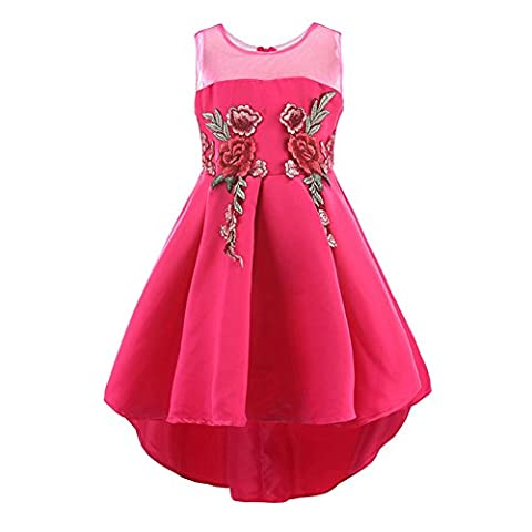 Rose Green Ball Gown Tutus Dresses High Low Girl Dresses Big Girl Size 7-16 13 14 Cotton Pleated Skirt (Rose, 160)