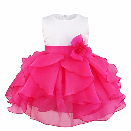 FEESHOW Baby Girls Organza Ruffle Wedding Party Christening Baptism Flower Dress Rose 9-12 Months