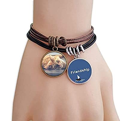 ProDIY Animal Yellow Cat Photograph Picture Friendship Bracelet Leather Rope Wristband Couple Set Estimated Price -
