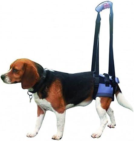 Handy Canis - Arnés de sujeción trasera para perros (consultar ...