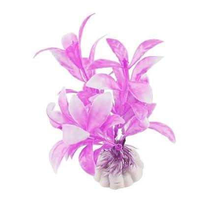 eDealMax DE 3 piezas de cerámica Base de plástico acuario hojas ovaladas/Plantas, DE