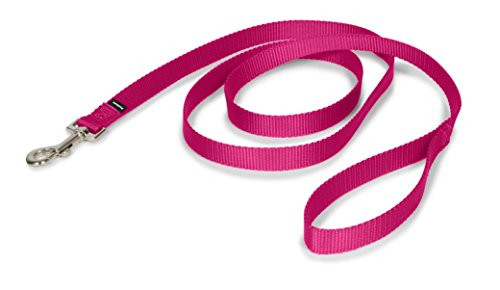 - PetSafe Medium Leash, 3/4
