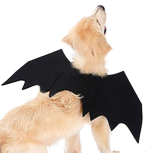 ZOOPOLR Bat-Dog Costume for Dogs, Bat Wing Party Pet Dress Up Halloween Costume Halloween Atmosphere for Dogs (L)