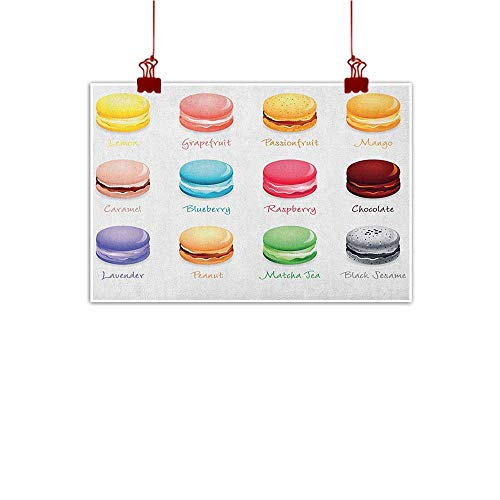 (Simple Life Minimalist Tea Party,Colorful French Macaron Cookies with Different Flavors Delicious Sweets Cuisine, Multicolor 24