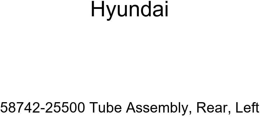 Rear Left Genuine Hyundai 58742-25500 Tube Assembly