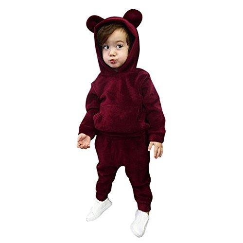 Minisoya Toddler Baby Boy Girls Warm Velvet Hoodie Casual Hooded Sweatshirt Tops Long Pants Tracksuit Outfits Set (Wine, 24M)