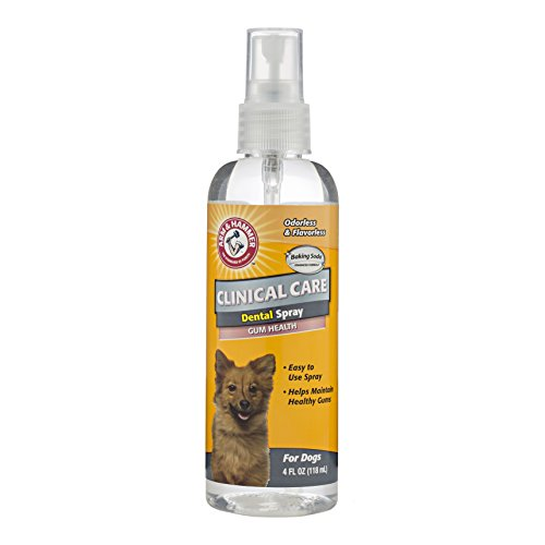 Arm & Hammer Clinical Pet Care Gum Health Dental Spray for Dogs | Soothes Inflamed Gums, 4 ounces, Odorless and Flavorless