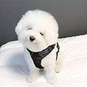 PHILWIN Large Dog Harness, No-Pull Vest Harness with Safe Belt, Reflective & Adjustable, Breathable Oxford Material… Click on image for further info.