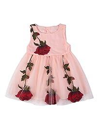 BOBORA Baby Girls' Rose Lace Mesh Dress
