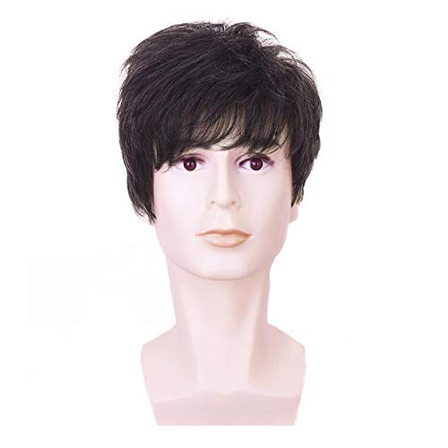 Diy-Wig Natural Short Dark Brown Synthetic Wig for Men Boy Soft Fluffy Cosplay Hair Full Wigs -