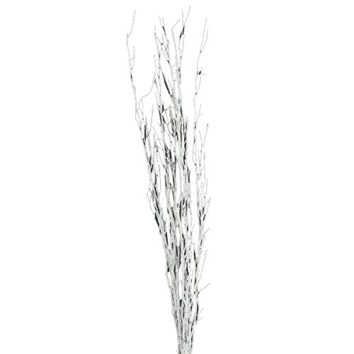 "Shinoda Design Center 5 Piece/2 Piece Glitter Natural Bamboo Stem Set, 18-24"", White"