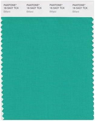 Amazon.com: Pantone Smart color Swatch tarjeta, 16-5427X ...