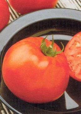 jetsetter tomato seeds - 4
