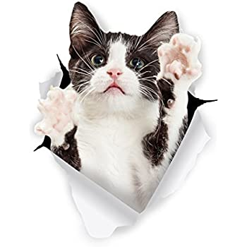 Winston & Bear 3D Cat Stickers - 2 Pack - Black & White Tuxedo Cat Decals for Wall - Fridge - Toilet - Room - Car - Retail Packaged