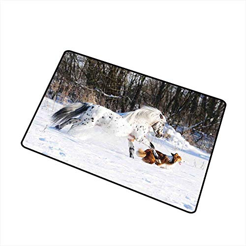 (RelaxBear Horses Universal Door mat Legendary Appaloosa Pony and Sable Border Collie Runs Gallop in Winter Photo Print Door mat Floor Decoration W15.7 x L23.6 Inch Multicolor)