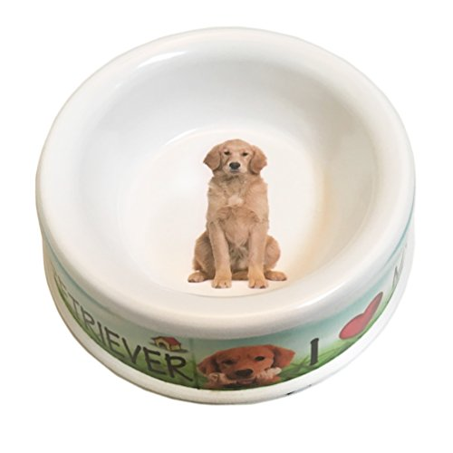 riever Dog Bowl, 10-inch (Retriever Dog Bowl)
