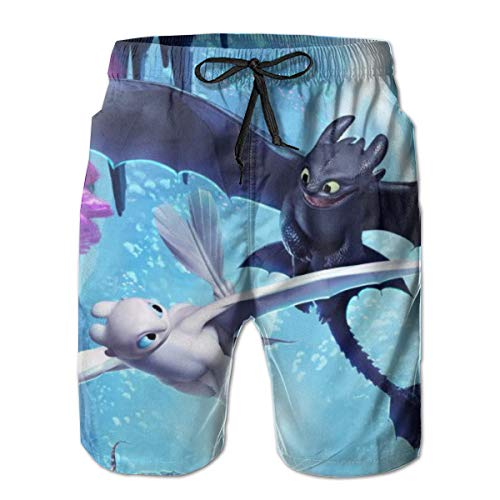 Mens How to Train Your Dragon Toothless Swim Trunks Quick Dry Board Shorts Beach Swimwear Bathing Suit with Mesh Lining White]()