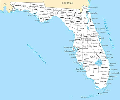Art Oyster Map of Florida FL - County Map with Selected Cities and Towns - 43