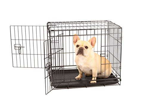 Carlson Secure And Compact Double Door Metal Dog Crate