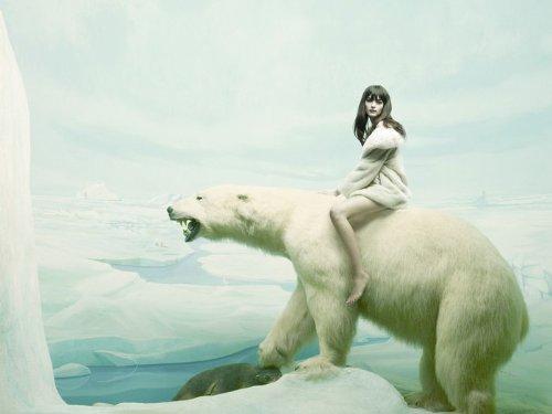 Bear Riding Polar (Girl Riding Polar Bear Snow Fantasy Art 32x24 Print Poster)