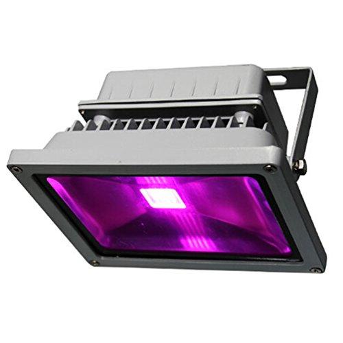 Viktion wasserdichte LED Pflanzenlampe LED Pflanzenlicht Growlicht LED-Pflanzen-Wachstumslampe 10W 20W 30W 50W 70W für Obst Gemüse Pflanzen Innen-Gewächshaus Glashaus (20 Watt)