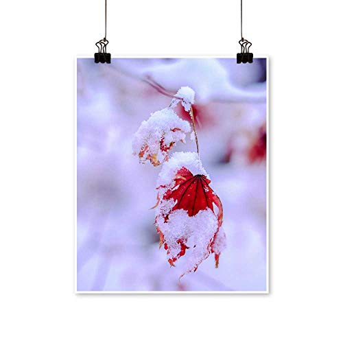 (Wall Decor The Snow Maple Leaf Wall Art for Bedroom Home,24