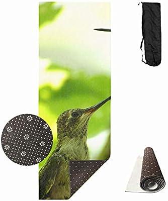 Amazon.com : Shllwe Printed Hummingbird Yoga Mat, Prana Yoga ...