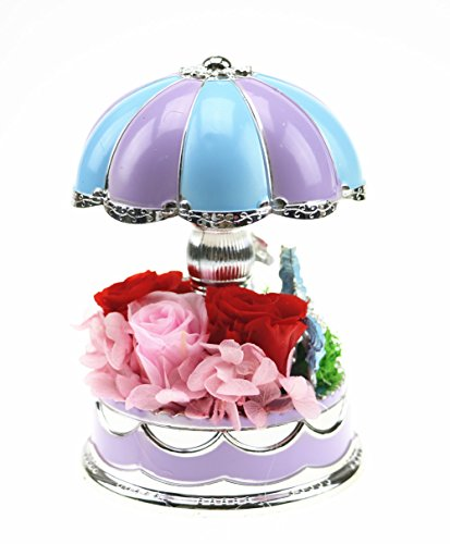 Rotation Carousel Music Box Gift Decorations Artwork Handicrafts with LED Lamp Lighted 2-Horse Carousel Music Box is Surrounded by Beautiful Fresh (Lighted Music Box)
