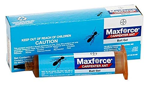Bayer 4314807 Maxforce Carpenter Gel 27g Ant Insecticide
