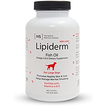 Lipiderm fish oil softgels for skin and coat for Fish oil pills for dogs