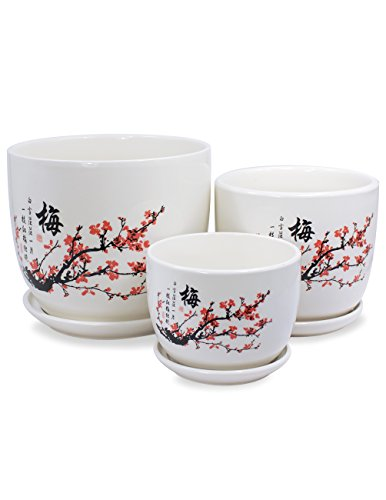 Dahlia Set of 3 Hand Painted Ceramic Planter/Plant Pot/Flower Pot w. Attached Saucer, Plum Blossom