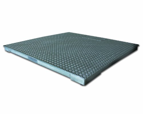 Fairbanks Scales 93842 Aegis Floor Scale with FB1100 SS Instrument, NTEP Approved, 5,000lb Capacity, 60 x 60 Platform, Stainless Steel Scale