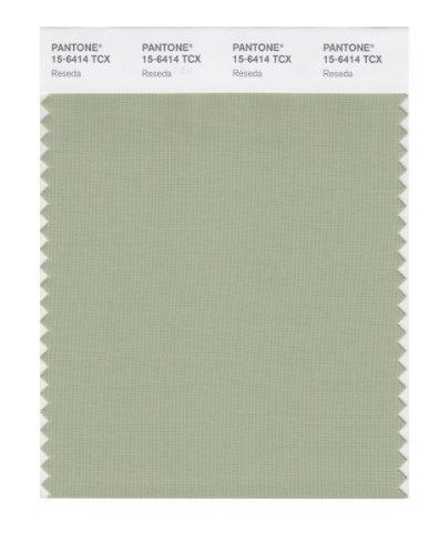 PANTONE SMART 15-6414X Color Swatch Card, Reseda