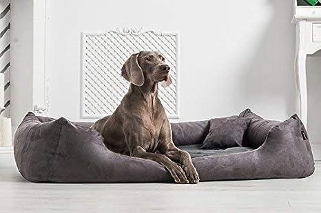 tierlando ortopédica CAMA PARA PERRO Pluto ORTO Visco Visco Espuma de suave VELOURS talla M 80x60cm Grafito Gris plv3-02: Amazon.es: Productos para mascotas