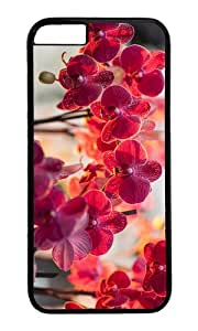 Orchid phalaenopsis red color flowers PC Black Hard Case for Apple iPhone 6(4.7 inch)