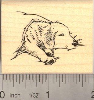 Sleeping Labrador Retriever Dog Rubber Stamp