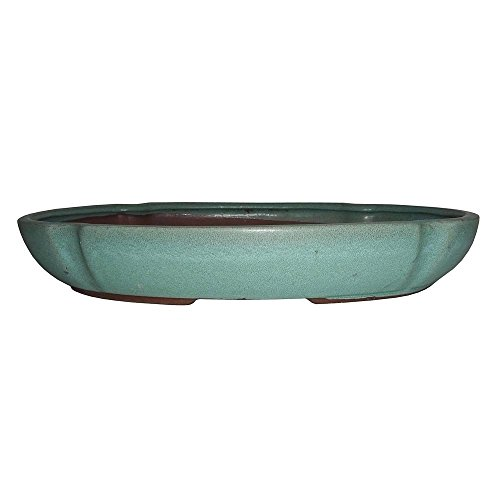 Brussel's 12'' Lotus Bonsai Glazed Ceramic Pot (X-Large, Matte Green) by Brussel's Bonsai (Image #1)