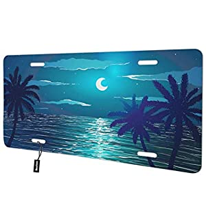 Palm-Trees-Front-License-Plate