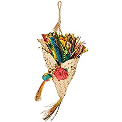 "Planet Pleasures Birdie Bouquet Bird Toys, Large/8"" x 19"""