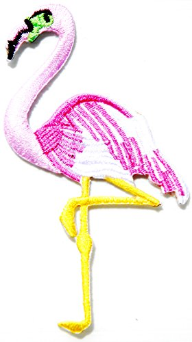 Watch Flamingo Bird - 6