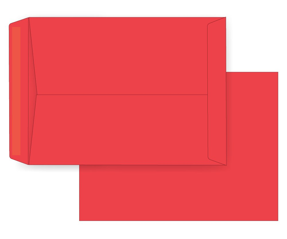 9 x 12 Catalog Envelope - 24# ReEntry Red (9 x 12) - Astrobright Jumbo Series (Open End) (Box of 1000)
