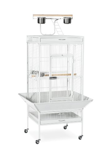 Prevue Hendryx 3152C Pet Products Wrought Iron Select Bird Cage, Chalk White - Bird Playtop Cage