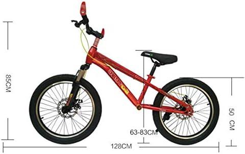 Bicicleta sin pedales Bici Bicicleta de Equilibrio sin Pedal para Adultos con Frenos de Disco - Bicicleta de neumáticos para autocar/papá/mamá de 50 cm (20 Pulgadas), Regalo de cumpleaños: Amazon.es: Hogar