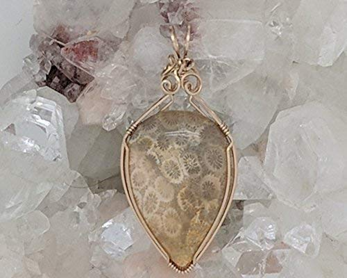 Fossilized Coral (2-1/4 x 1 Inches) Wrapped With 14 Karat Gold Filled Wire (Natural Stone Pendant) (Brown Gold) (Wire Wrap)