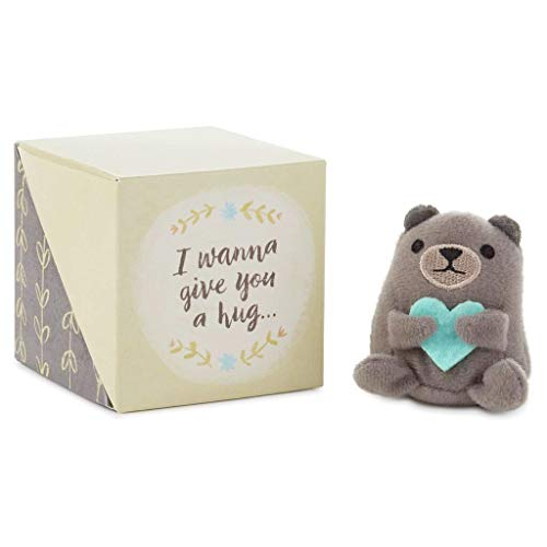 Mini Wanna Give You a Hug Care Cube with Bear -
