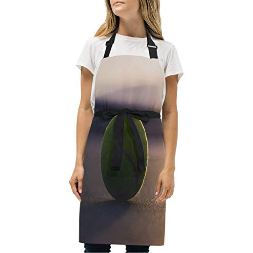 YIXKC Apron Wallpaper Sunset Adjustable Neck with 2 Pockets Bib Apron for Family/Kitchen/Chef/Unisex